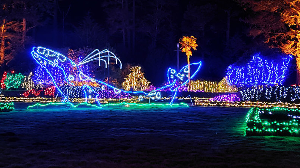 Shore Acres Christmas Lights 2020 2020 Holiday Lights at Shore Acres canceled 'due to the